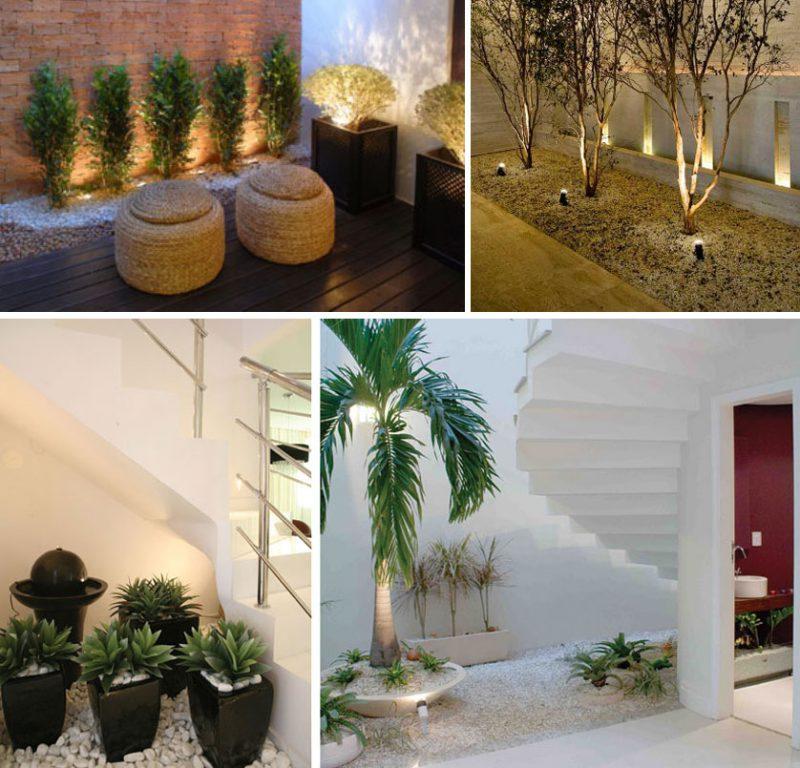 Plantas para jardim de inverno normalmente são de pequeno ou médio porte, o suficiente para que possam ser plantadas em vasos ou pequenas porções de terra.