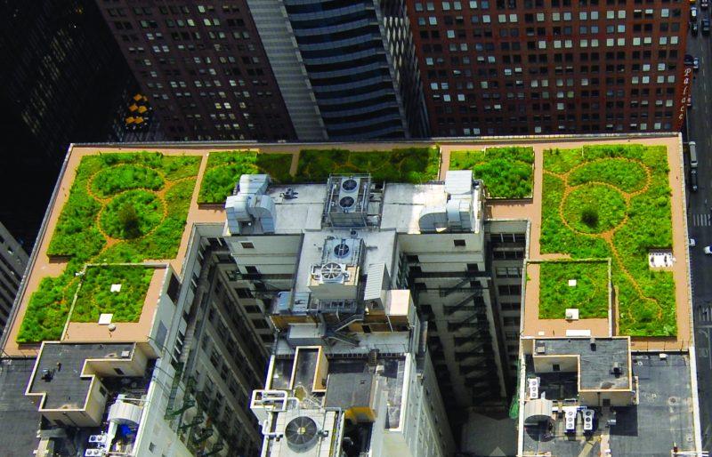 Cobertura de telhado verde sobre diversos prédios.
