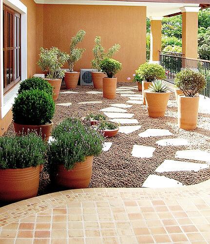 vasos de plantas em área aberta