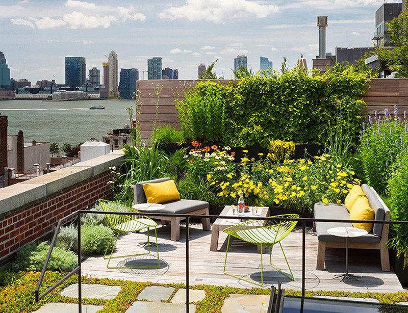 Terraço moderno com jardim