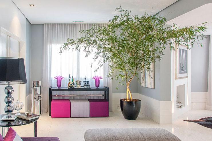 Bambu Mosso usado na decoração de sala moderna