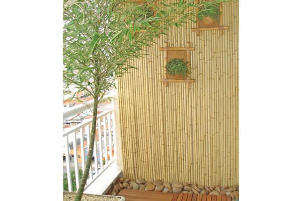 bambu mossô combinando com a decoração de painéis e móveis em bambu