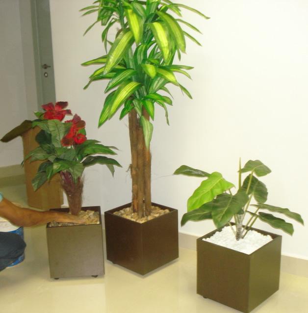 Utilize de mais de uma planta, agrupe algumas espécies de flores.