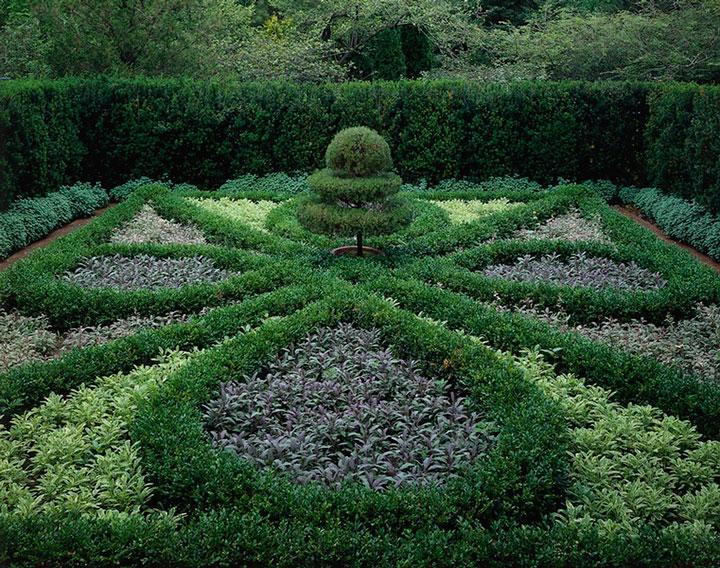 Formas geométricas rígidas são a cara deste tipo de jardim