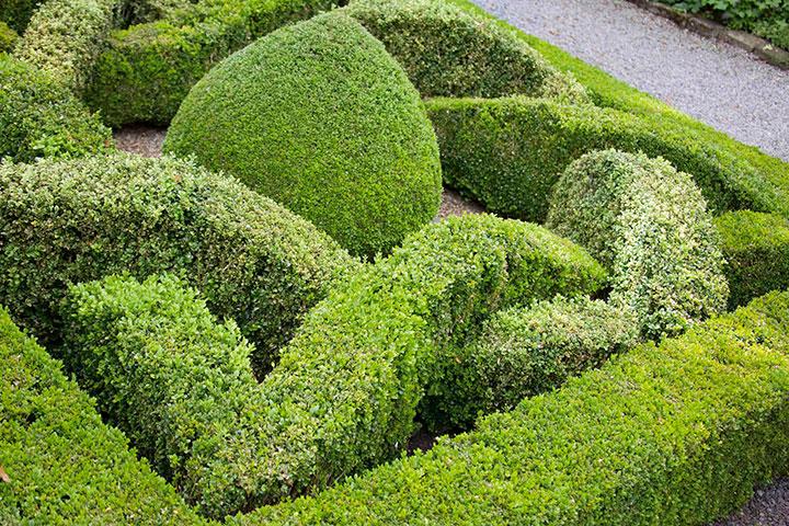 Mais um belo exemplo de jardim do tipo Knot Garden