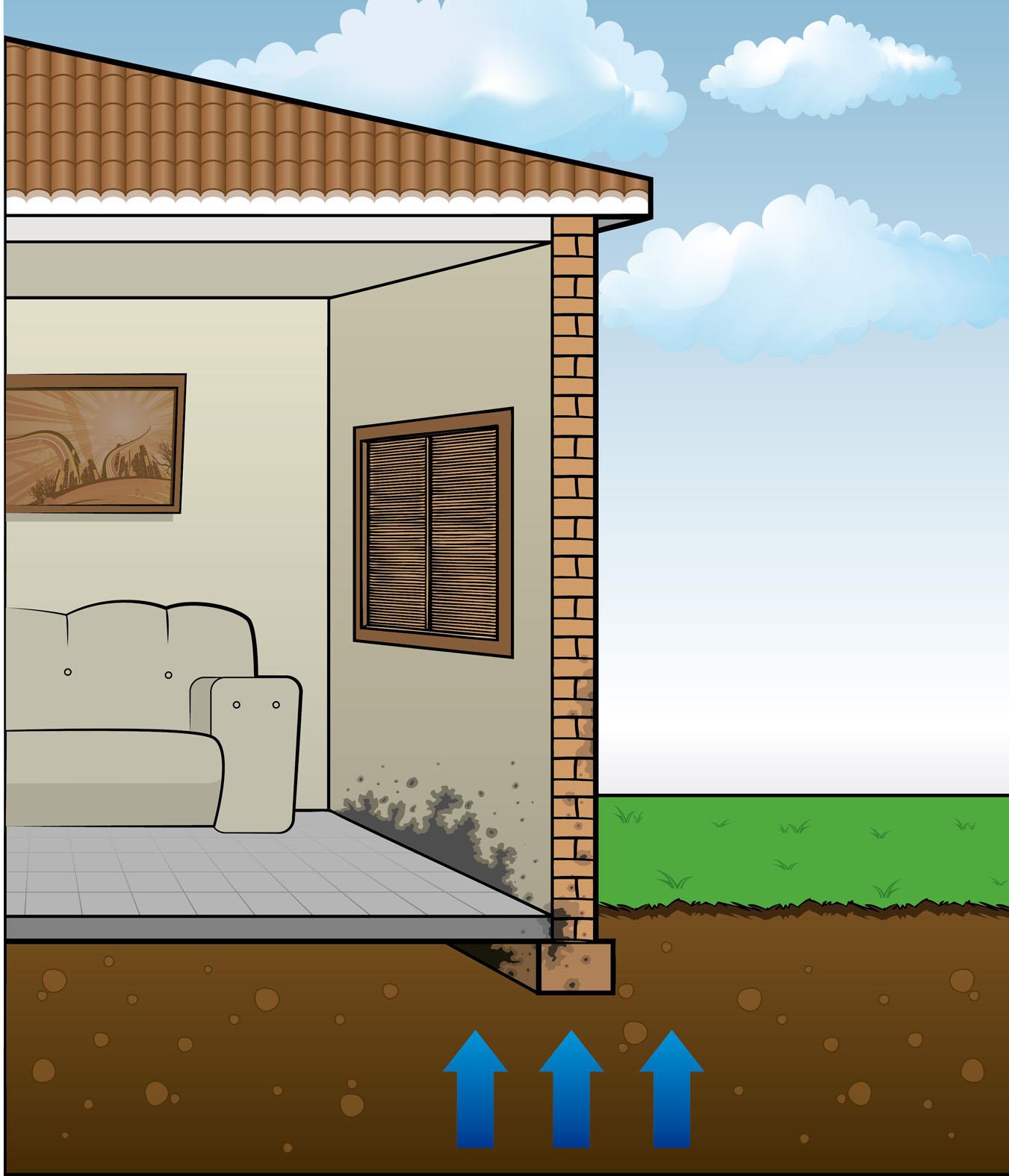 problemas da umidade