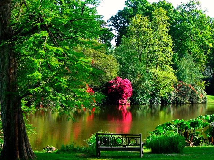 Típica paisagem de um Jardim Inglês, em que a natureza mostra sua exuberância