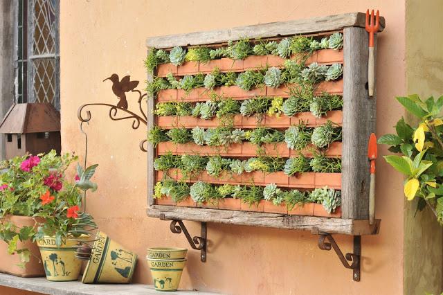 Quadro vegetal Rústico para jardim vertical