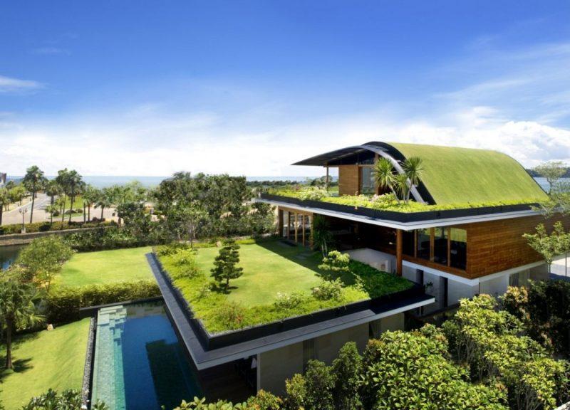 telhado ecológico - cobertura verde residencial sobre uma casa.