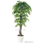 Planta japonesa artificial para decoração de ambientes