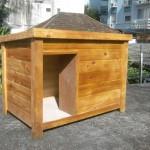 casinha da cachorro de madeira