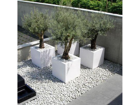 seixo para jardim em belem:Vasos em concreto também podem ser um excelente aliado na hora de
