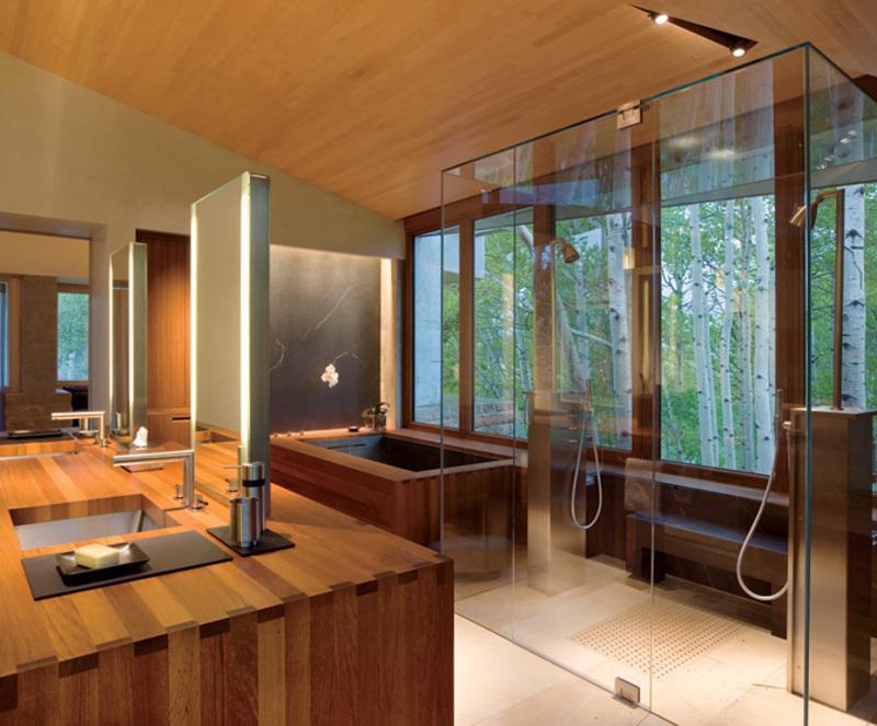 uso de box de vidro transparente em banheiro luxuoso