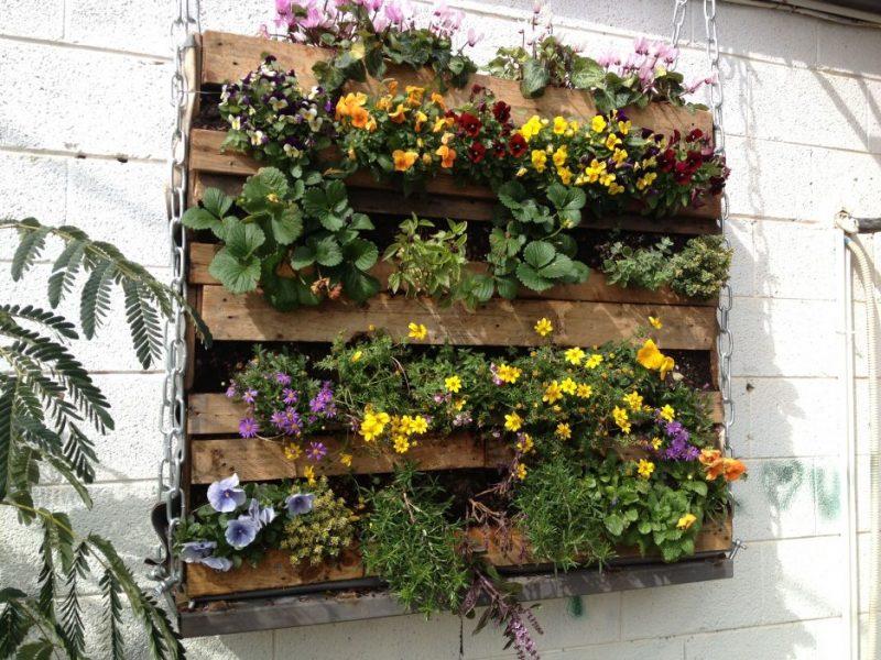 montagem de um jardim vertical com paletes