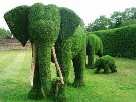 Na inglaterra, os tradicionais jardins ingleses são ornados com esculturas de cipreste podados centenárias.