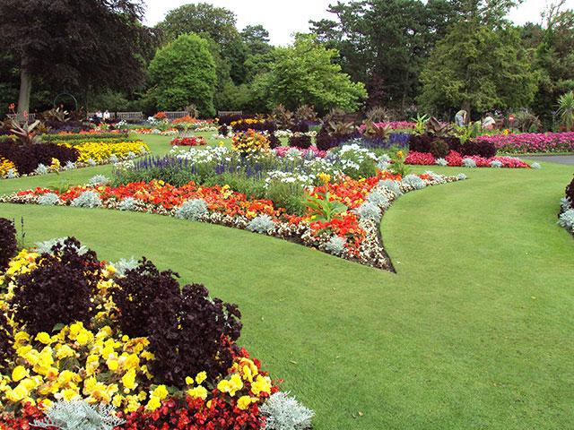 Um imenso jardim tradicional super florido e vibrante