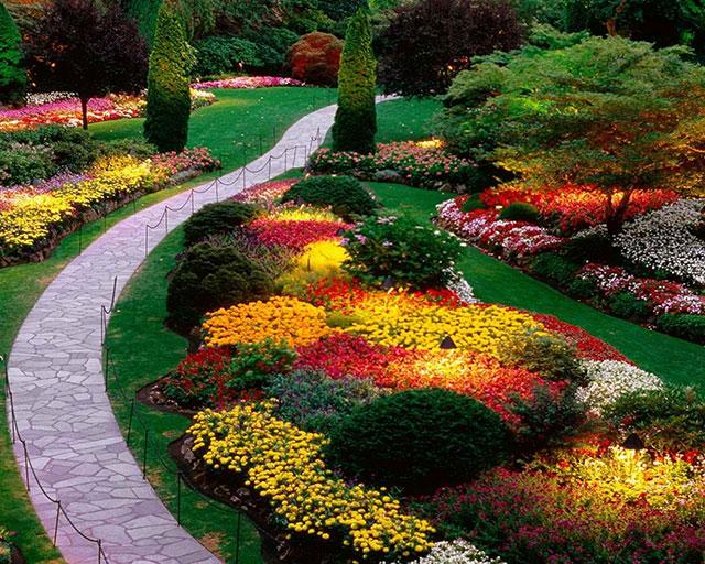 Um modelo super sofisticado de jardim com muitos tipos de flores no paisagismo