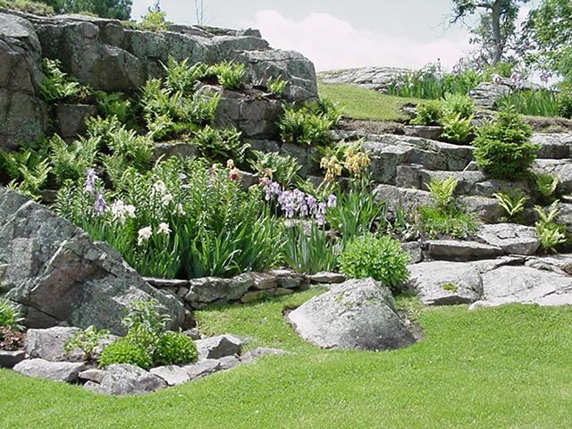 Modelo de jardim rochoso com diversas plantas que dão flores