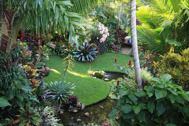 Esse modelo de jardim tropical possui um córrego e muita vegetação densa