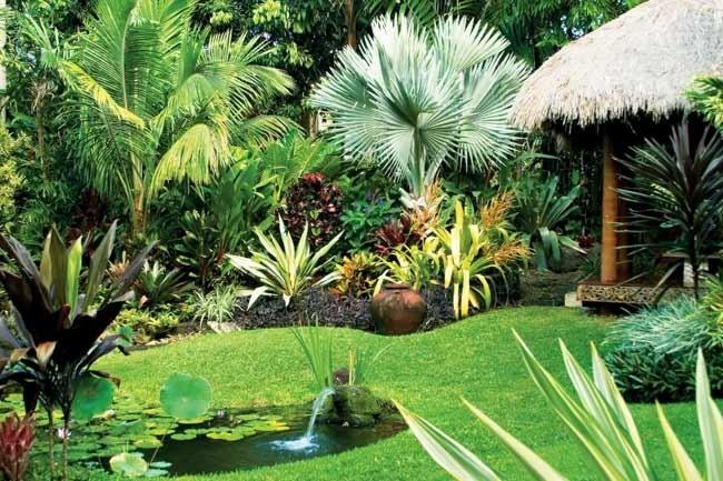 Um belo exemplo de jardim tropical usando muita vegetação e água