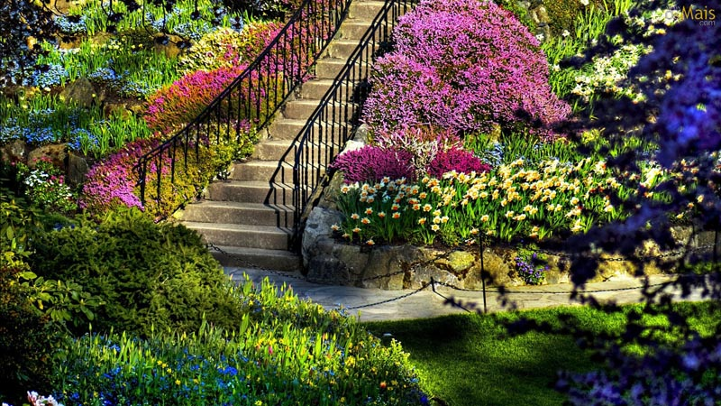 Modelo de jardim florido, muito vibrante