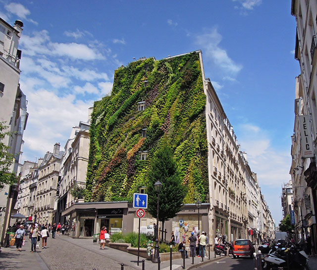 fachada verde oasis