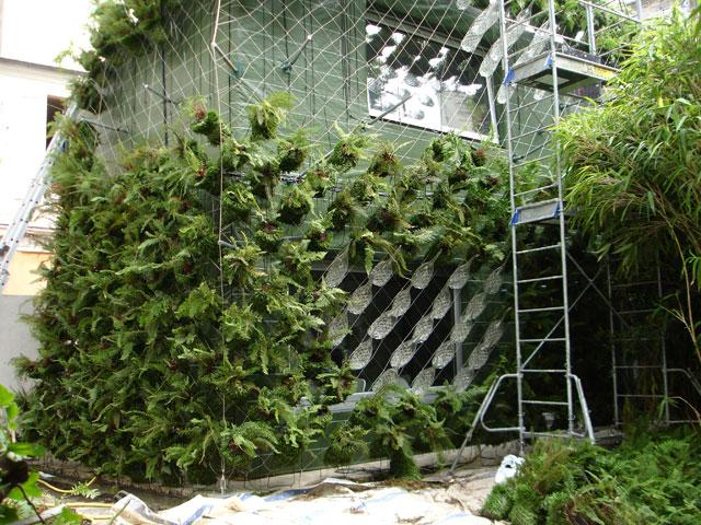 fachada verde casa