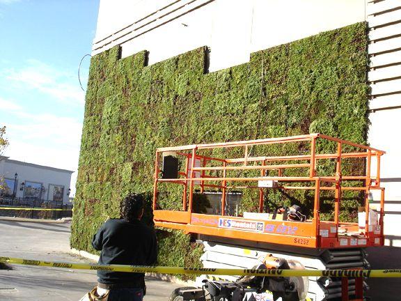 módulos vegetação fachada verde