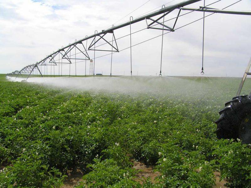 Uso de aspersores fixos na irrigação de um gramado de grandes extensões