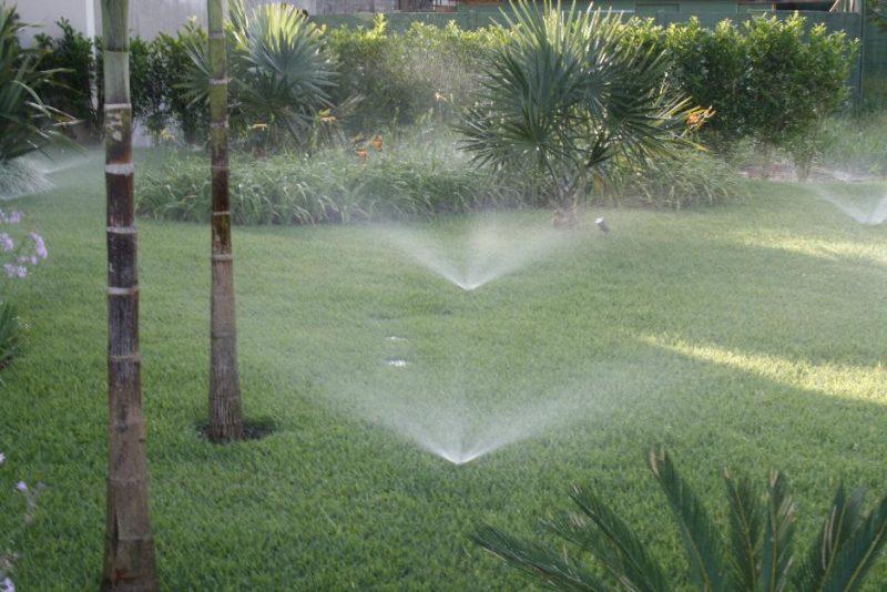 irrigação de jardim por aspersão