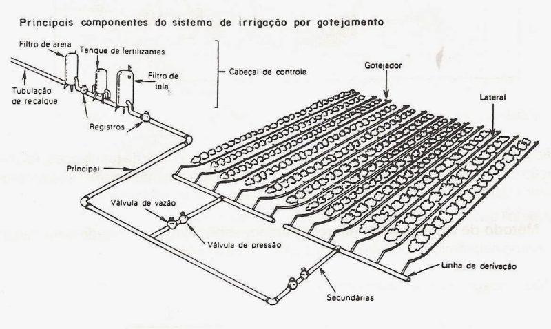 Esquema de funcionamento do sistema de irrigação por gotejamento