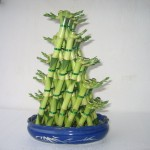arranjo floral bambu da sorte
