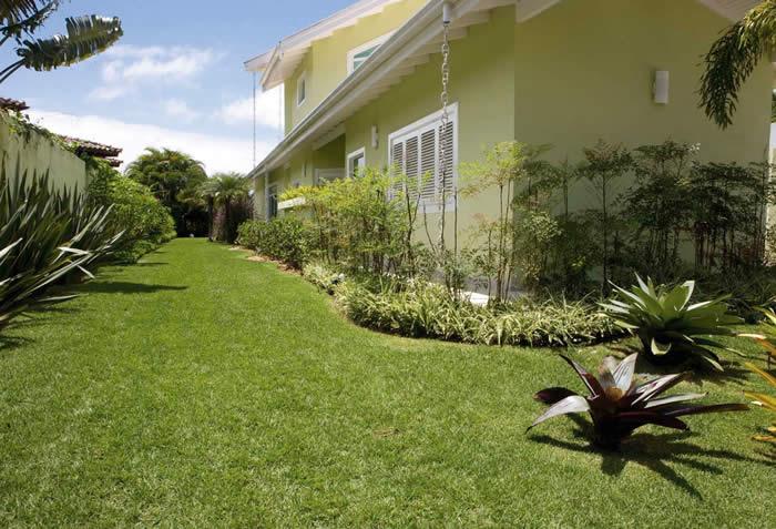grama esmeralda jardim
