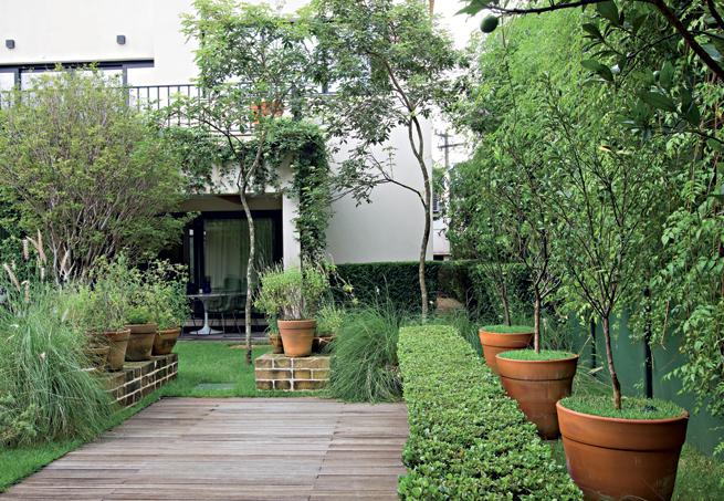 Projeto de jardim contemporâneo usando vasos decorativos e grama japonesa