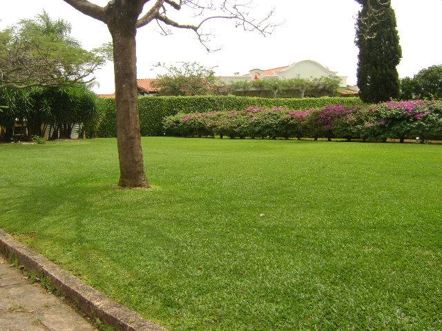 A Grama Batatais é indicada a locais com grande incidência solar