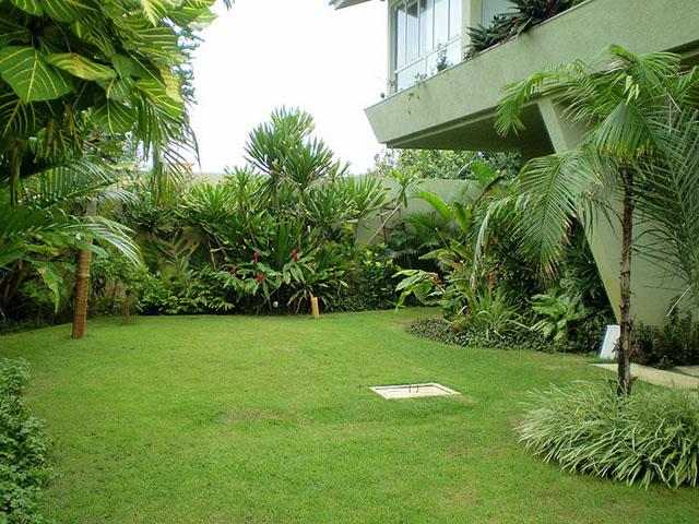 Nesse jardim, a grama bermuda é mesclada a vegetação farta no jardim contemporâneo