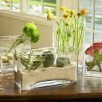 Vasos de vidro decorativos para o banheiro com suculentas