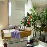 Vaso de vidro translúcido com planta para o banheiro