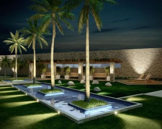 Palmeira real usada para compor jardim com espelho d'água