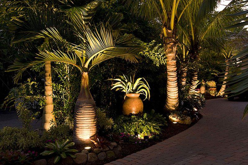 Palmeiras do jardim iluminados de baixo para cima, reforçando a verticalidade