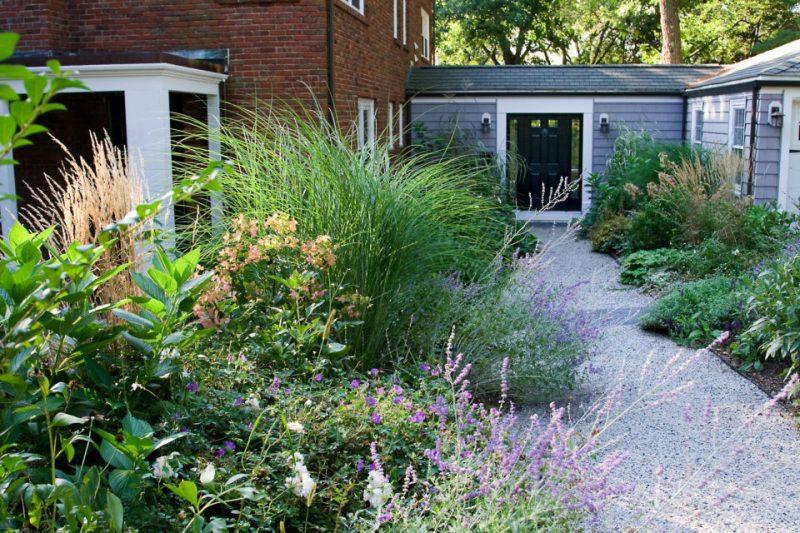 Utilização de capins e plantas locais para composição do jardim