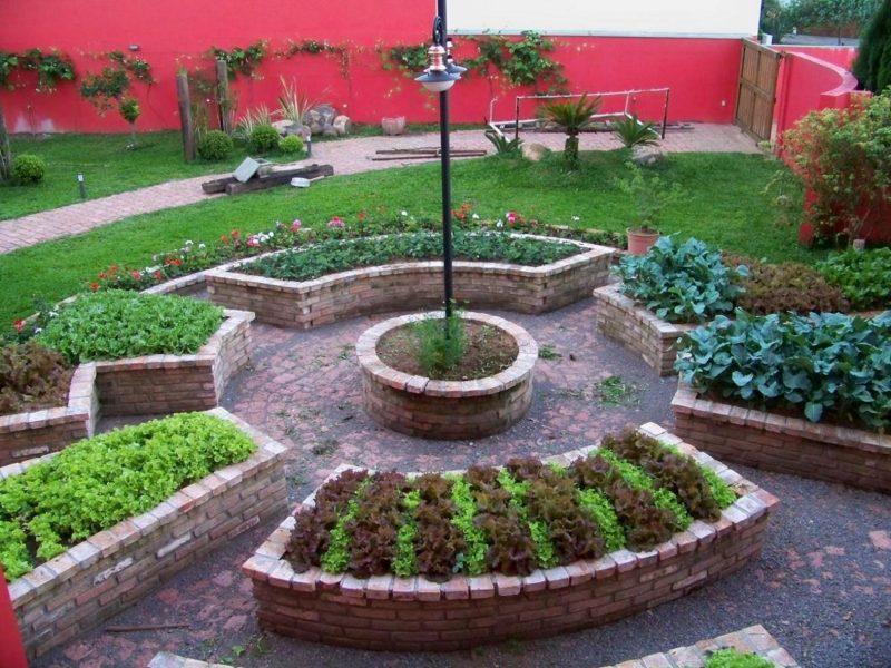 Canteiros de horta no pátio