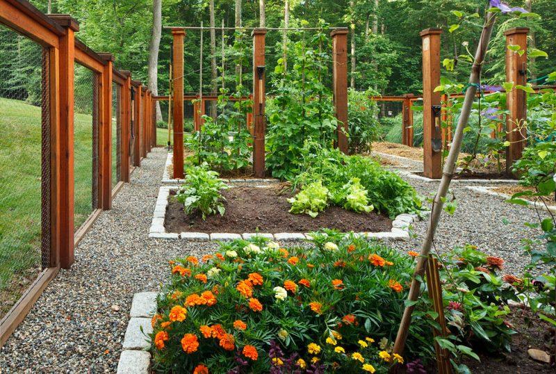 Jardim que mistura canteiros de flores com verduras