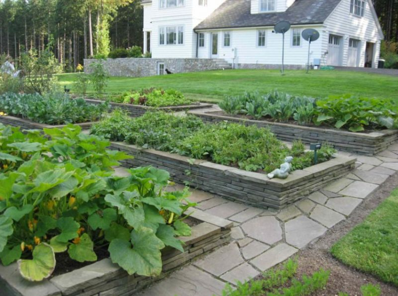 canteiros de verduras com cercado e calçadas de basalto