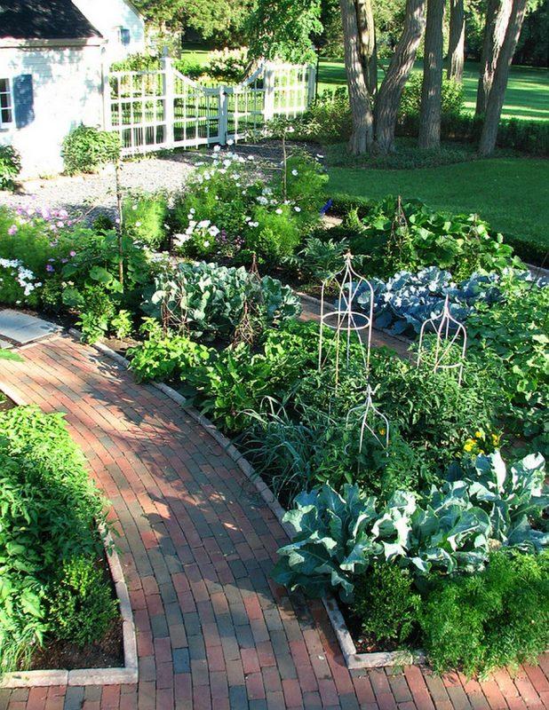 Jardim residencial com canteiros de verduras plantados