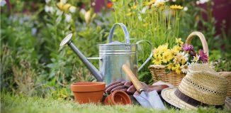 Melhor curso de jardinagem