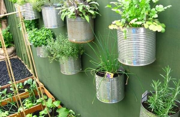Horta vertical de apartamento com latas reaproveitadas