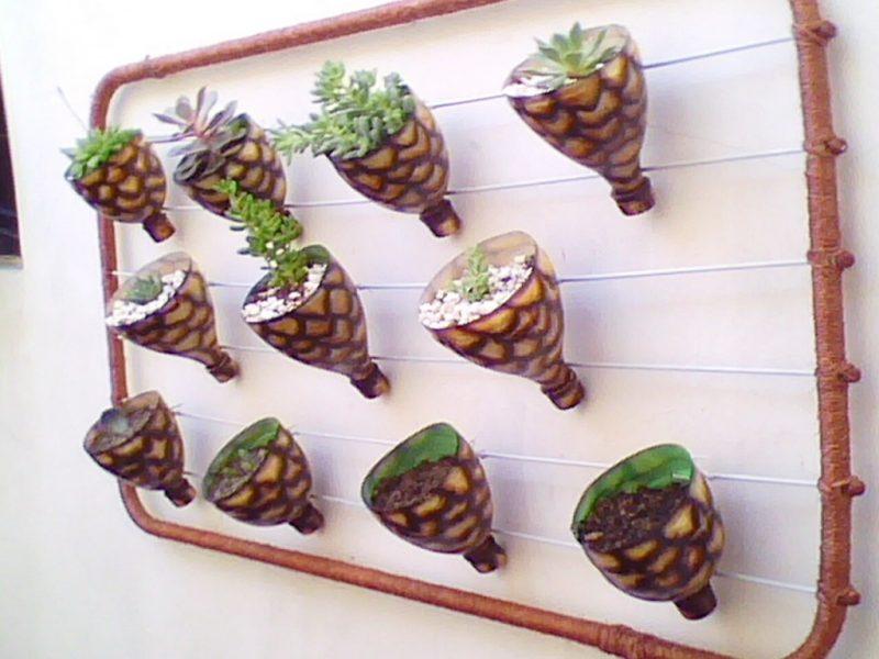 Horta Suspensa em garrafa PET Horta vertical em garrafa PET fixada em  #4A6530 1024x768