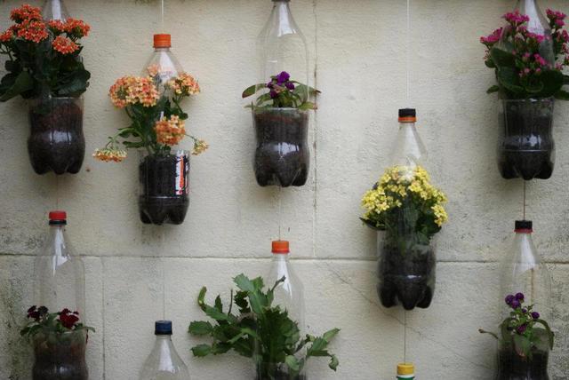Horta jardim suspenso de garrafas