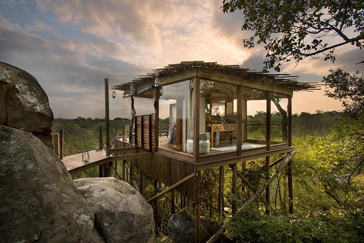 Casa de vidro simples na árvore
